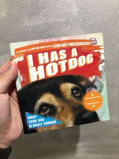 I has a Hot Dogs