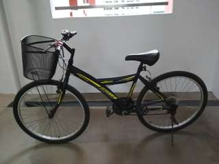 Bicycle with basket