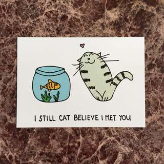 Still Cat Believe I Met You Greeting Card