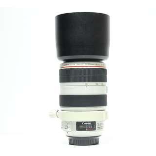 Canon EF 70-300mm F4.0-5.6L IS USM Lens