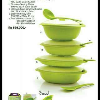 Tupperware Blossom Collection set