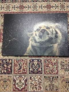 frame harimau
