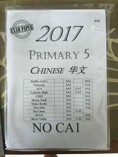 Chinese Exam Papers