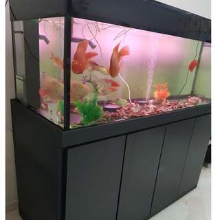 5ft Complete fish tank with cabinet, pump and ornamental fishes for sales