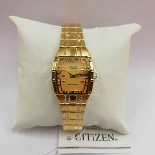 Citizen Women Steel Watch
