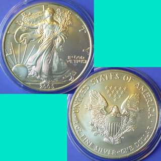 Coin US USA United States of America American Silver Eagle Dollar 2005 P Silver Content 1 oz Toned