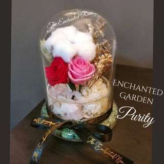 Cotton Flower, Preserved Roses & dried flowers in Glass Dome: Hand-Arranged & Exclusive to The Enchanted Rose ~ Purity Enchanted Garden