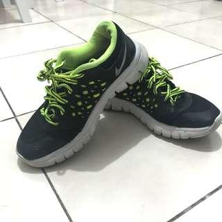 Nike Flex Run Women