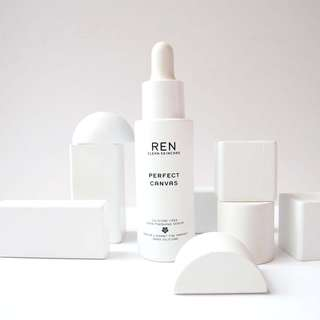 BNIB Ren Clean Skincare Perfect Canvas