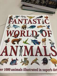 Fantastic World of Animals