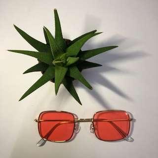 Sunglasses/Shades