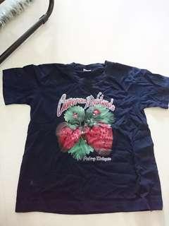 Size L Cameron Highlands tshirt
