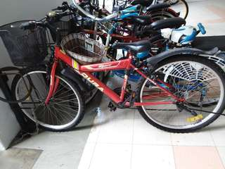 Adult bicycle- dura