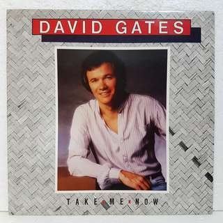 David Gates - Take Me Now Vinyl Record