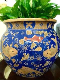 Beautiful urn