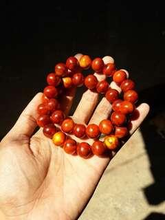 Bracelet Kayu Raja
