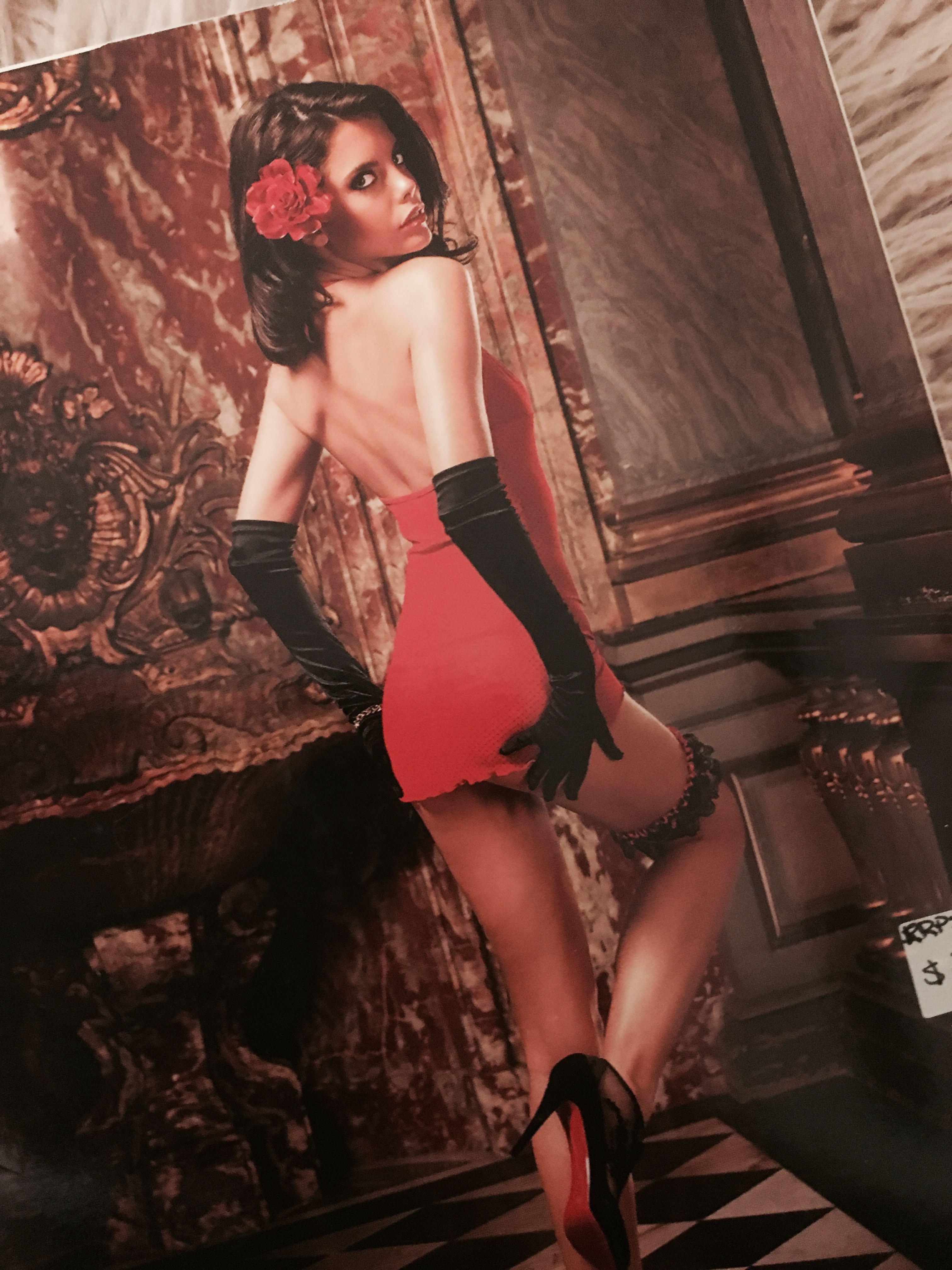 BACI Lingerie - Dot lace & Mesh Dress - NEW
