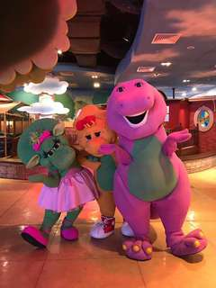 Special promotion ticket Family themepark