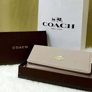 Coach Purse Grey Color