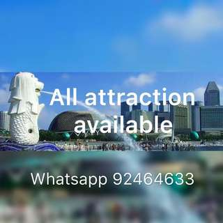 All attraction available