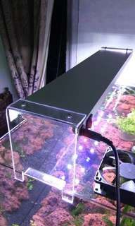 lampu led diy aquascape aquarium