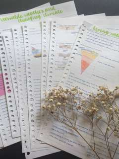 o level elective geography handwritten/photocopied notes