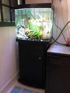 1.5ftx1.5ftx1ft fish tank with LED light and cabinet(location Bukit Gombak)