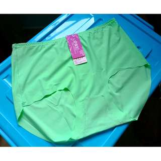 🎠 FLASH DEAL - Plus Size Seamless Ice Apple Green Mint High Waist Basic Undergarment Panty