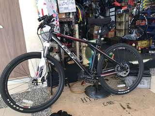 Raleigh and GT mountain bike ( 2bikes)