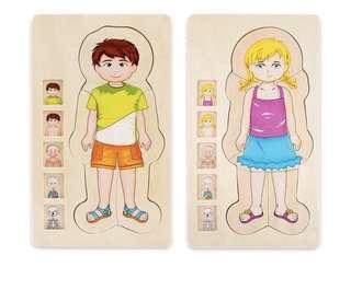 Human body parts wooden puzzle / science / montessori /  preschool education