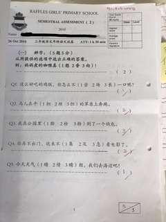 RGPS P2-P5 Chinese Material (Set 3)