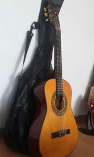 Acoustic Guitar (+guitar bag)