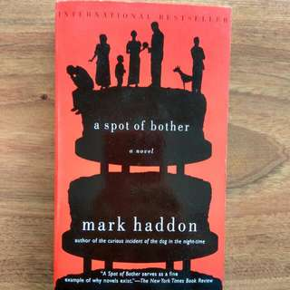 $3 a spot of bother mark haddon