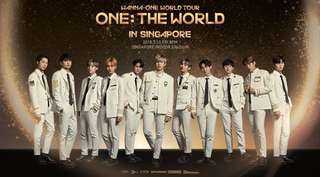 VIP PEN B WANNA ONE ONE TOUR IN SINGAPORE