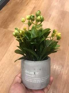 Gray Concrete Planter with Fake Plant