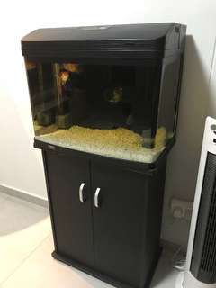 2ft fish tank with cabinet