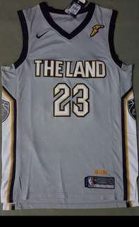Cavs Jersey the Land