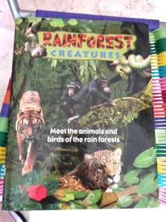 Rainforest creatures
