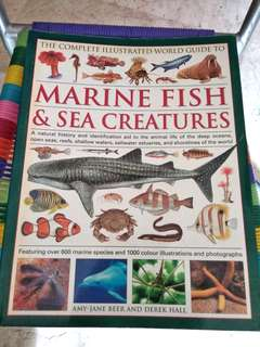 Marine fish and sea creatures