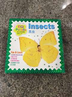 Children puzzle -insects