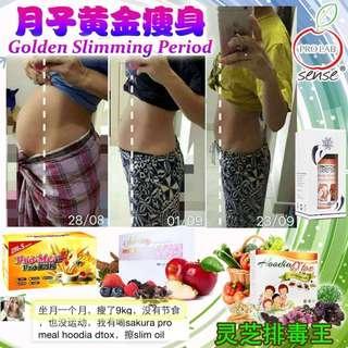马来西亚直发6盒sakura + 6盒pro meal + 6盒Hoodia Detox + 3罐Slimming Aromatherapy Oil