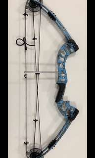 Compound Bow/Fishing Bow