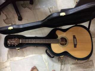 Takamine D Series Acoustic Guitar with Hardcase