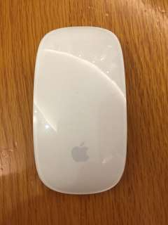 Apple Magic Mouse (wireless)