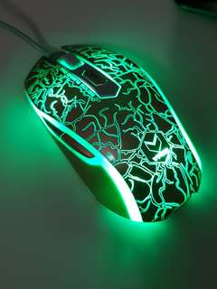 Gaming Mouse (Rapoo V210)