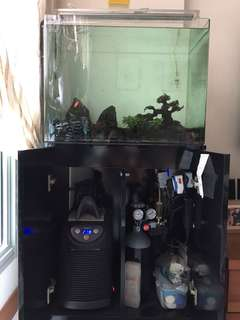 Tank and cabinet (giving away all small accessories free, including lily pipe) *EXCLUDE filter, CO2 and chiller