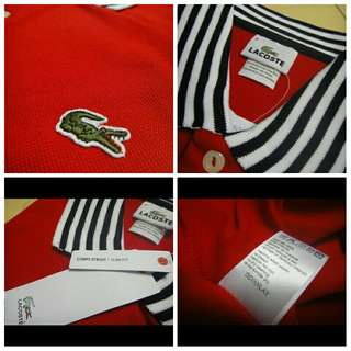 Lacoste tipped pique Mens polo shirt