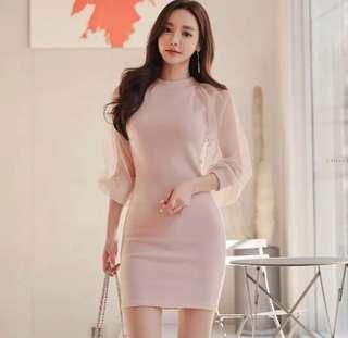 Sweet Korean Dress With Mesh Sleeves
