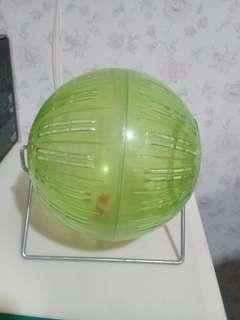 🚚 老鼠球