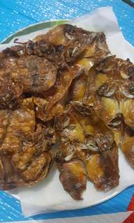 Dried Pusit & Unsalted Danggit from Cebu